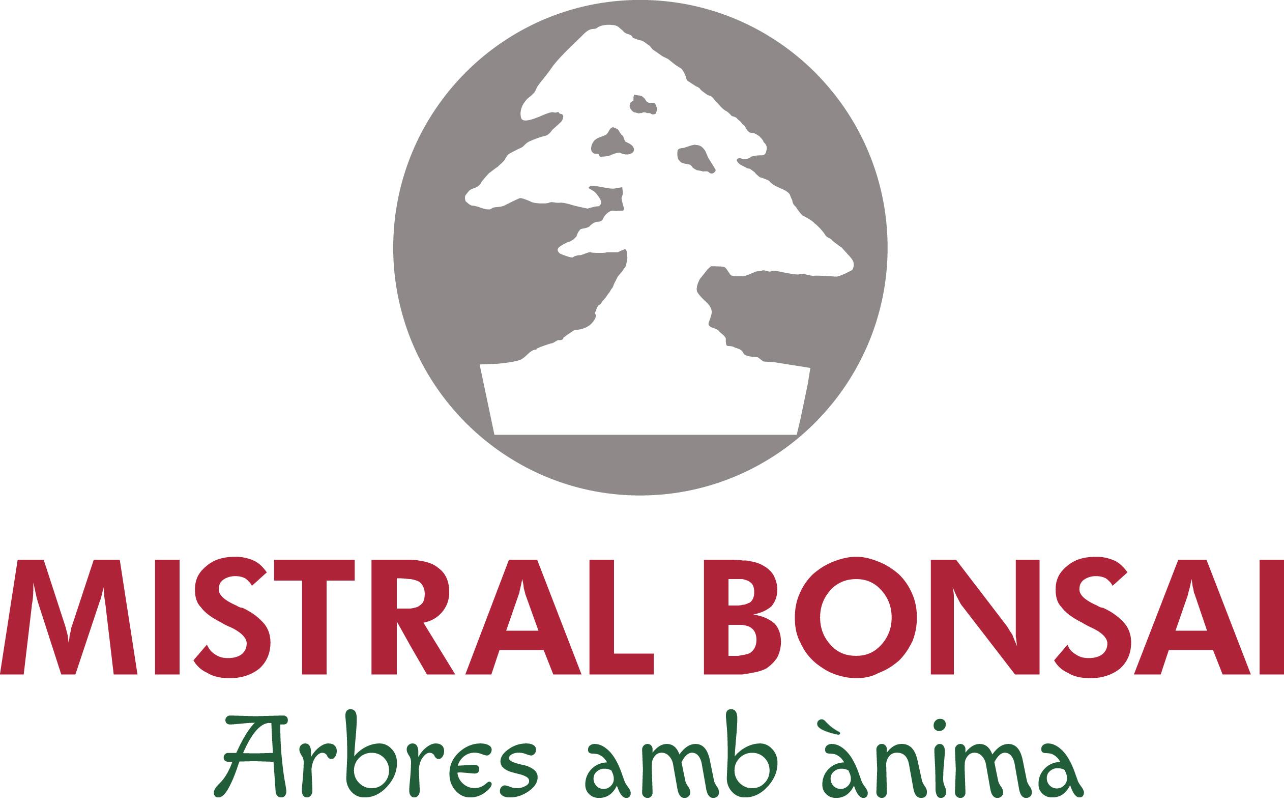 Mistral Bonsai
